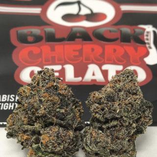 Black Cherry Gelato (pack of 4)