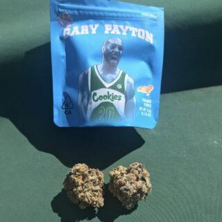 Gary Payton (pack of 5)