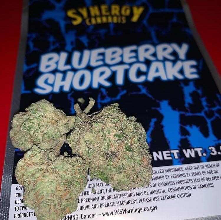 https://synergycannabisshop.com/wp-content/uploads/2021/04/BAE310D9-3B02-4362-BD5C-FC39833D34CF.jpeg